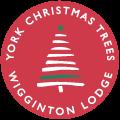 York Christmas Trees